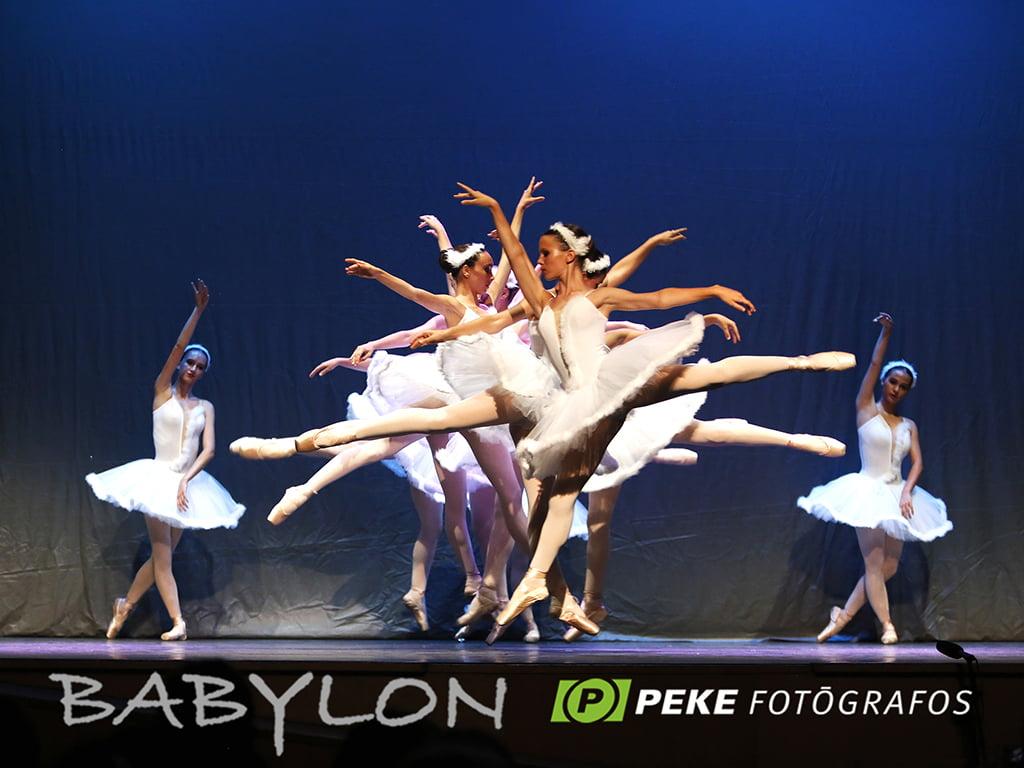 Lac des cygnes Babylone