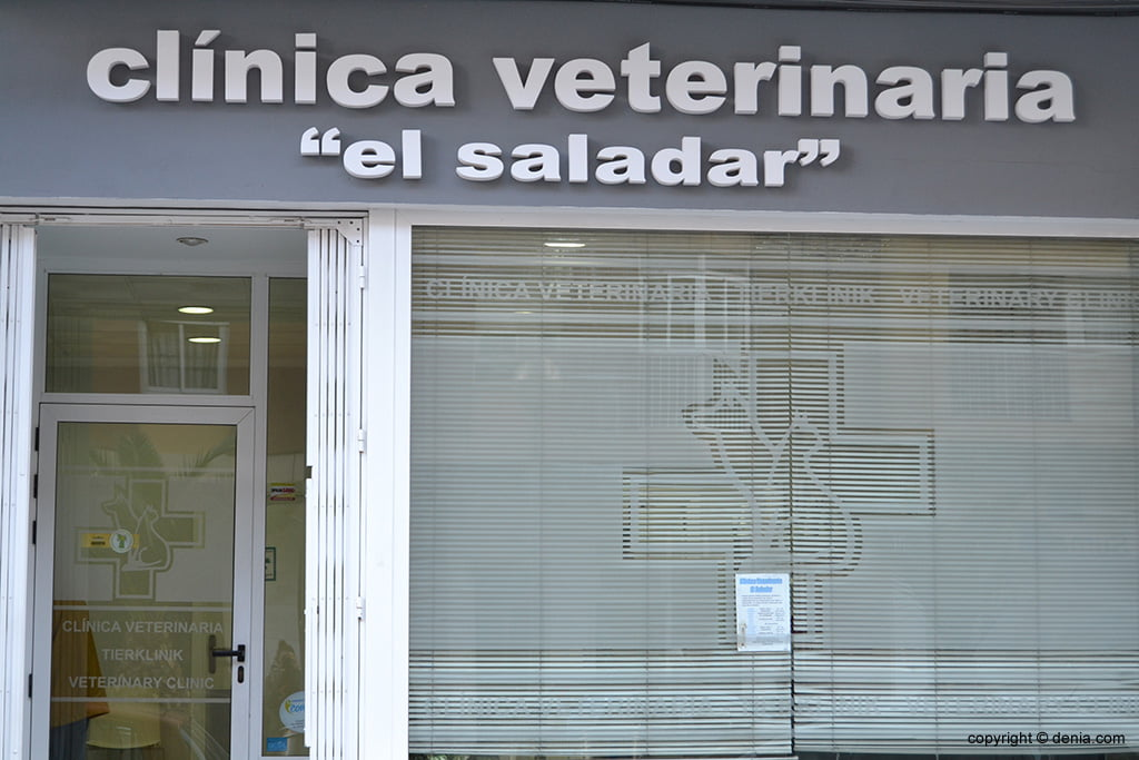 clínica veterinaria el saladar