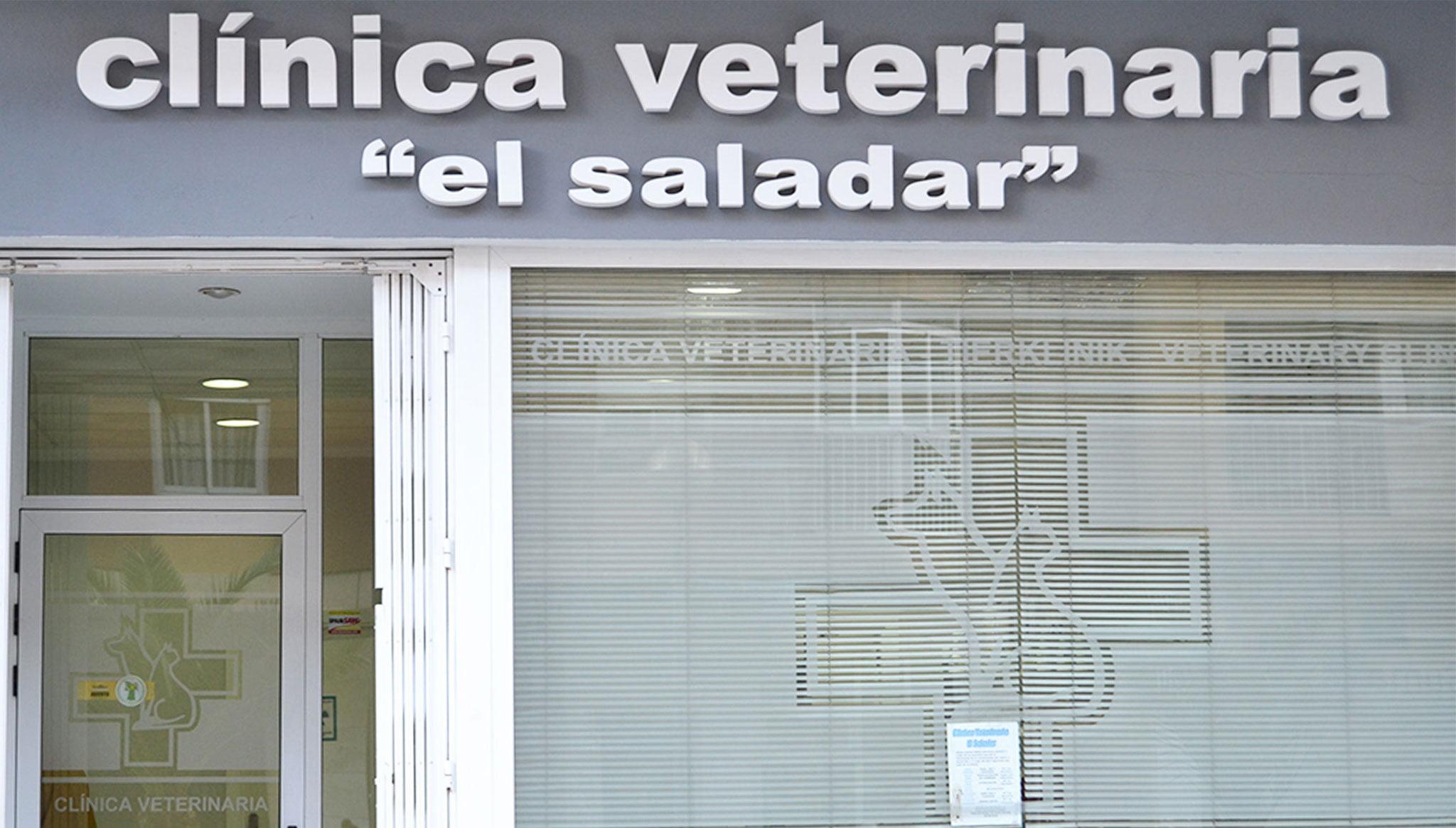 Entrada de Clínica Veterinaria El Saladar