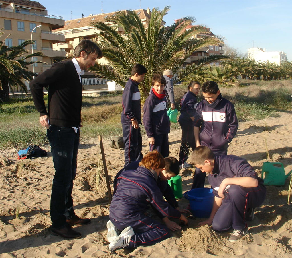 Los escolares plantan especies aut ctonas para regenerar for Oficina balearia ibiza