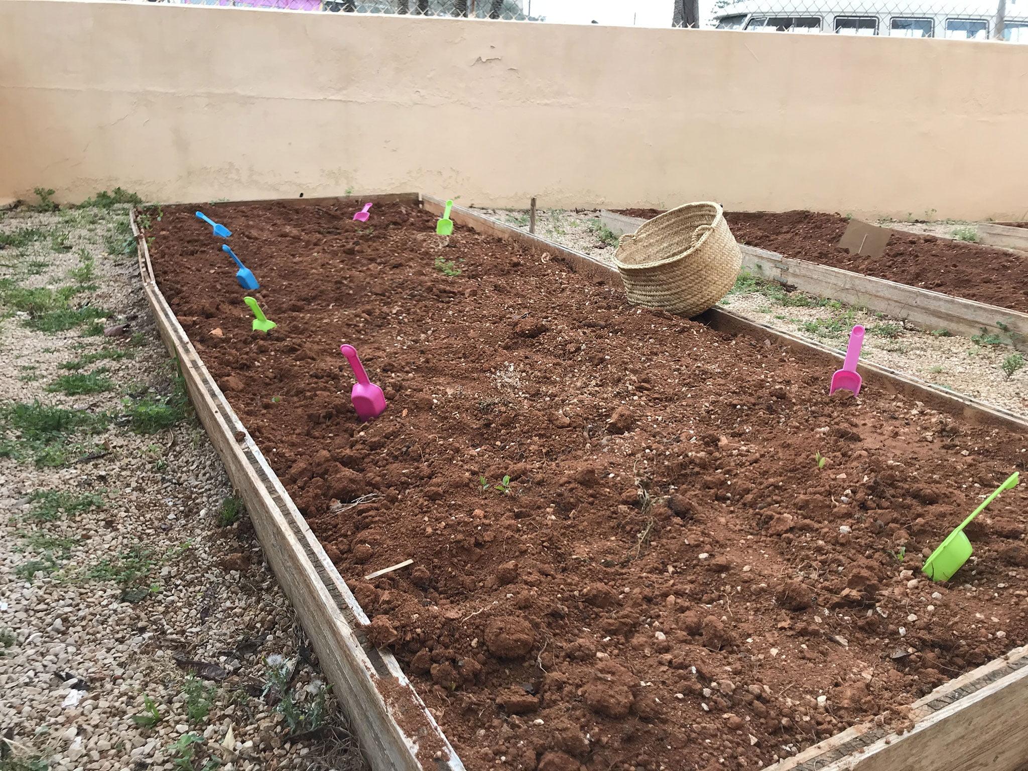 Terra per sembrar hort - Escoleta El Castellet