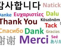 Academia de idiomas en Dénia, Estudio Saladar