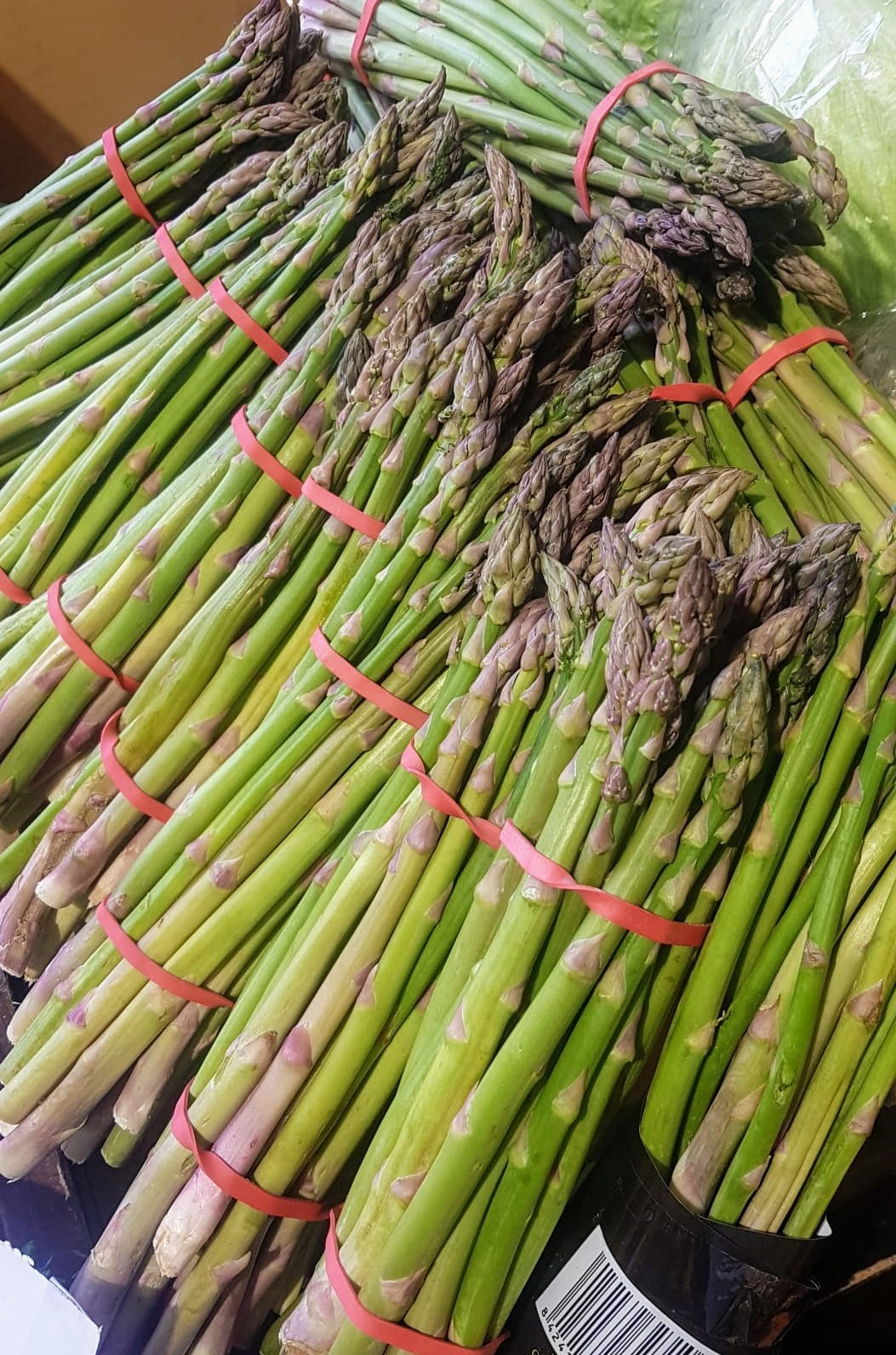 Asparagus in the Mosset