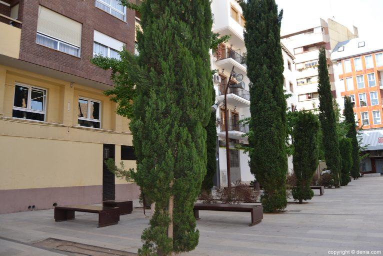 Árboles y bancos en la plaza del Convento