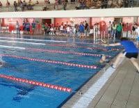 LLegada a meta de un nadador