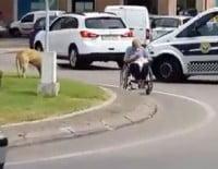 Mujer en silla de ruedas en la rotonda