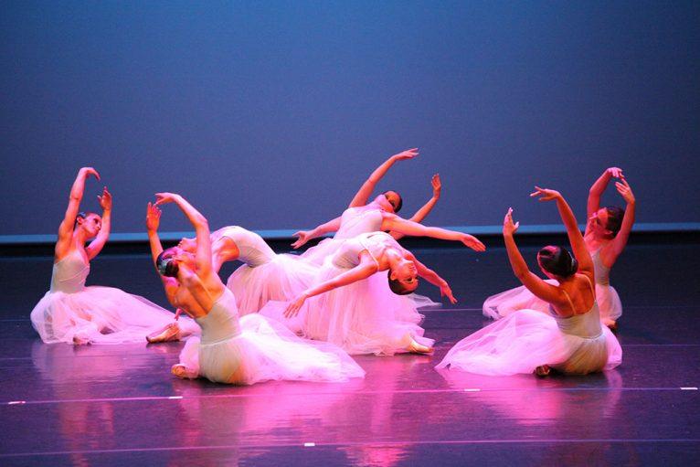 8 niveles de danza clásica