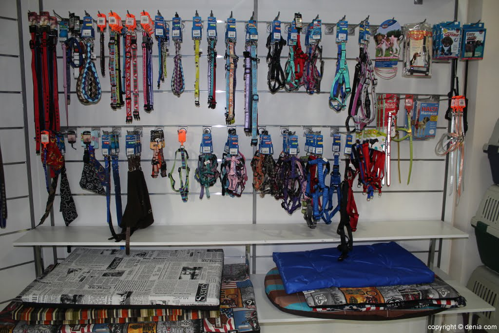 Correas en Santi Mas – Servicios para mascotas