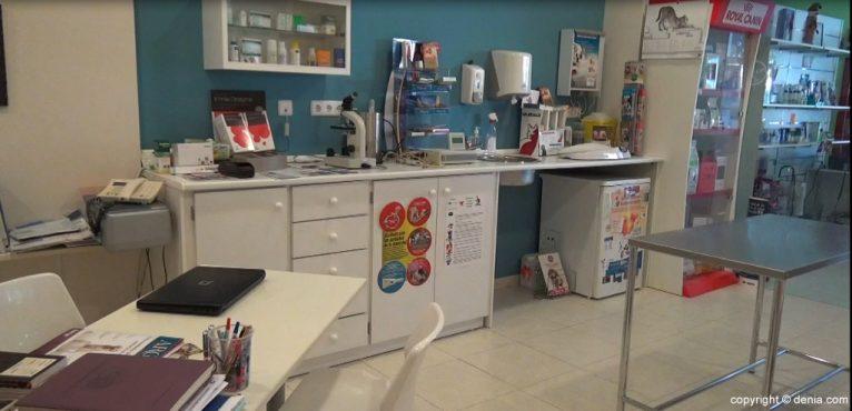 Veterinario en Santi Mas – Servicios para mascotas
