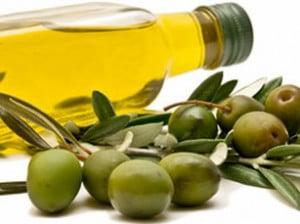 Curso de cata de aceite de oliva