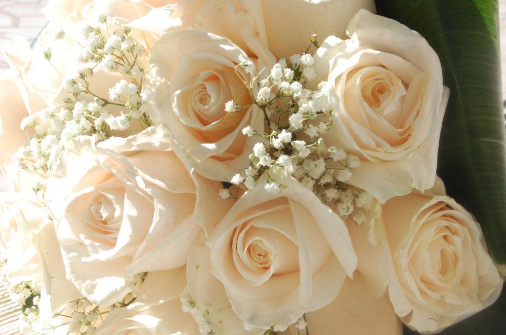Envío de flores con Interflora en Mandarina