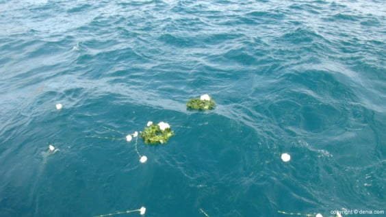 Jornadas sobre la fragata 'La Guadalupe' - flores