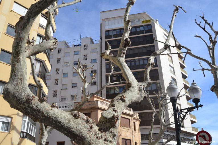 Calle Marqués de Campo in Dénia