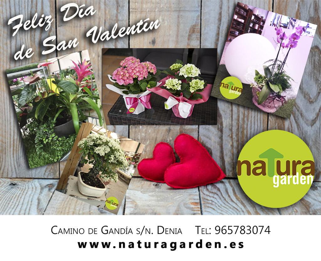 Natura Garden Valentine