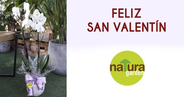 feliz san valentin natura garden