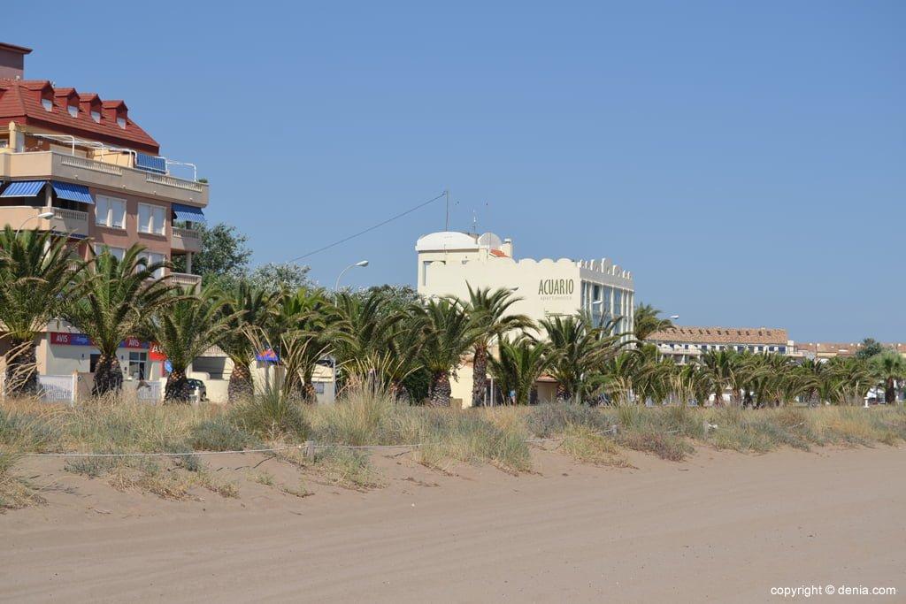 Rigenerazione delle dune sulla spiaggia di Punta del Raset Denia