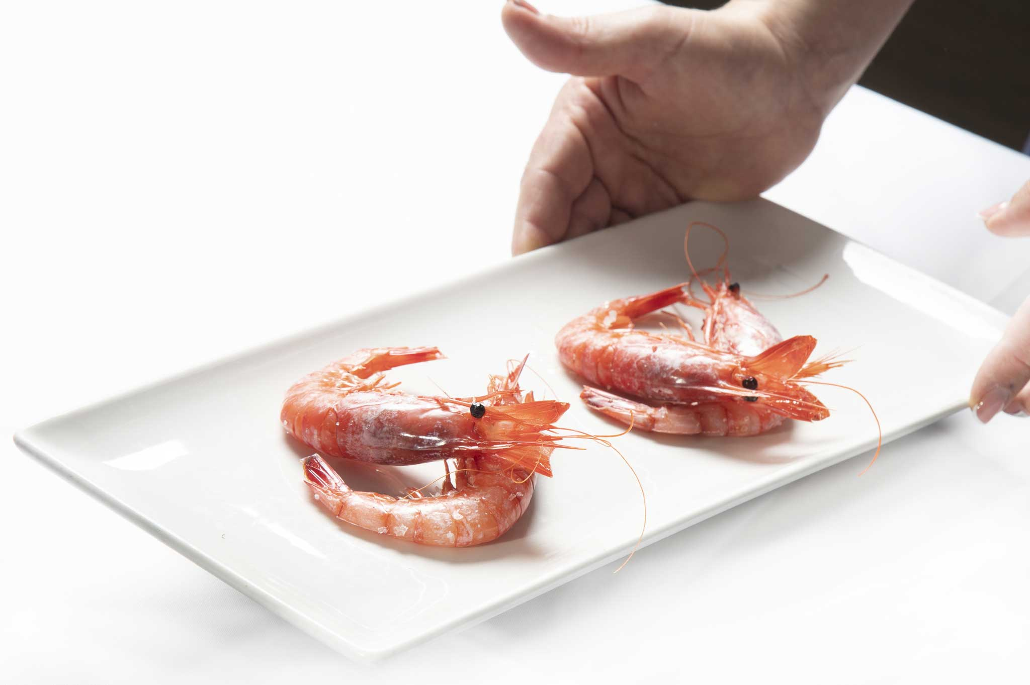 Comer gamba roja de Denia – Restaurante Balandros