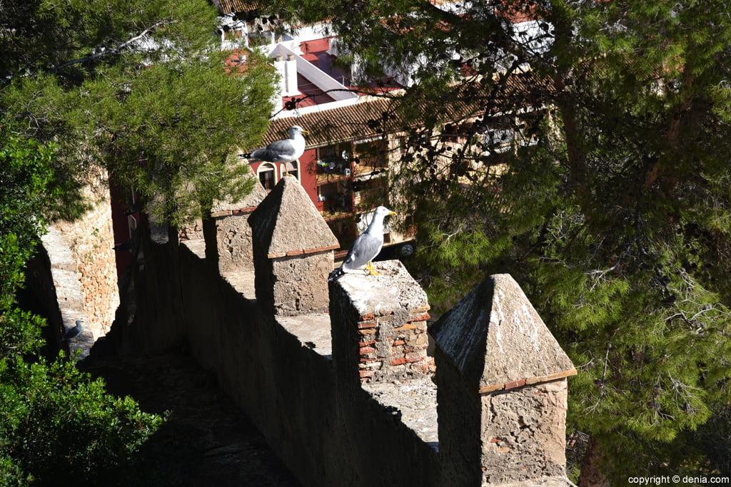 Castell de Dénia - merlets renaixentistes
