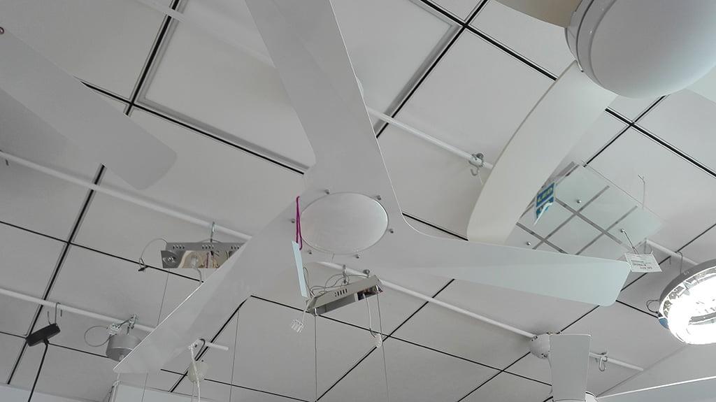 White fan in Lights of Denia
