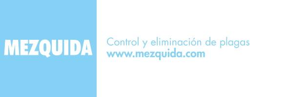Mezquida