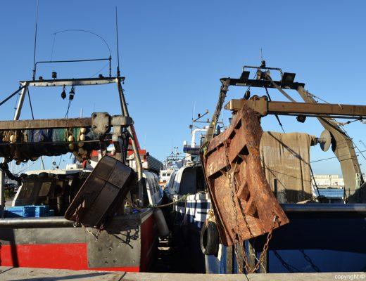 Barcos pesqueros en el puerto de Dénia