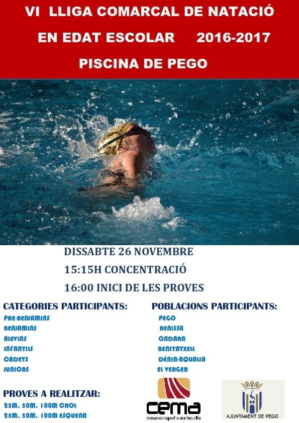 Cartel  de la VI Liga Comarcal de natación