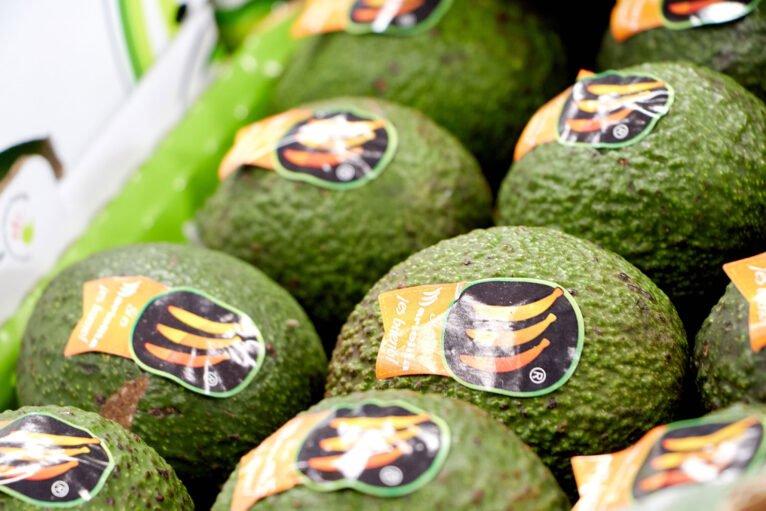 Aguacates en La Nau d'Orozco - Frutas y verduras Orozco