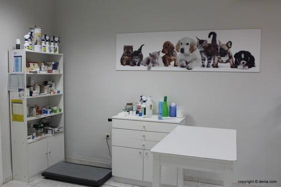 Saladar Veterinary Clinic