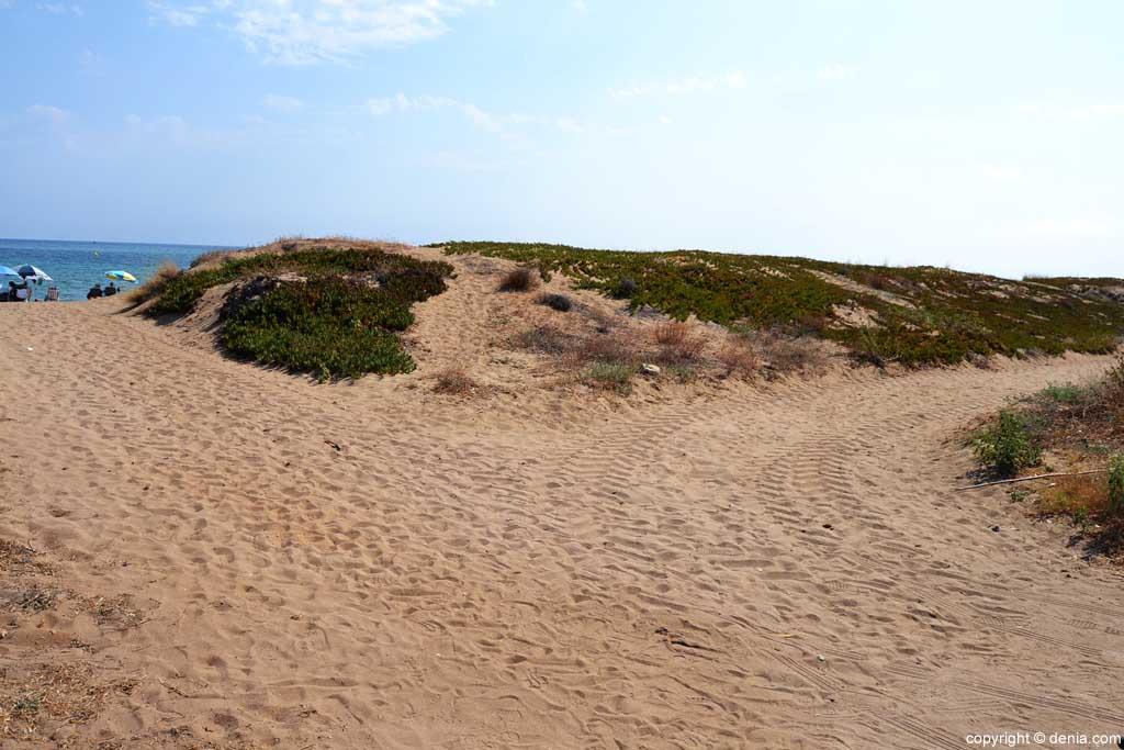 Playa Les Bovetes Dunas