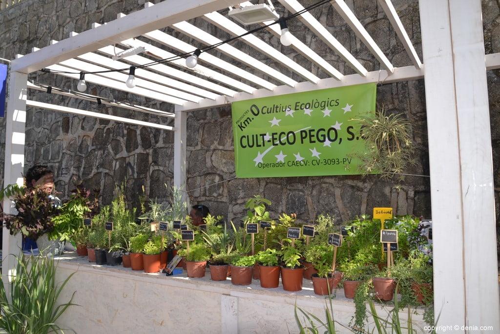 Dna Festival Gastronómico 2018 – Cult Eco Pego