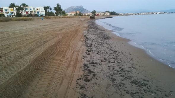 Imagen: Limpieza de algas en las playas de Dénia