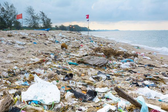 Image: Need for plastic recycling for beaches - Almudena Seguros Dénia Benidorm Altea