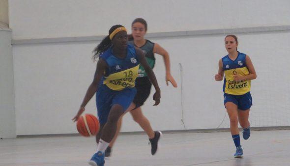 Imatge: Jugadora sènior del Dénia Bàsquet