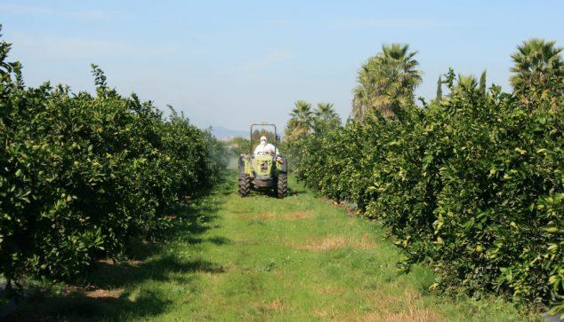 Imagen: Un trabajador con protección para trabajar en el campo