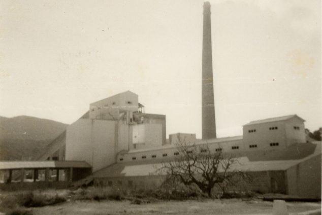 Imatge: Vista de la fàbrica de l'Portland el 1956, recentment construïda (Fotografia: Carles Doménech)