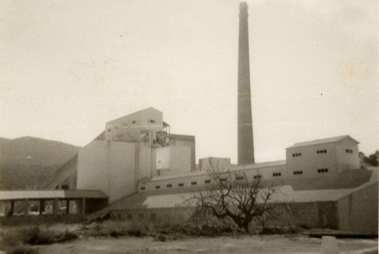 Vista de la fàbrica de l'Portland el 1956, recentment construïda (Fotografia: Carles Doménech)