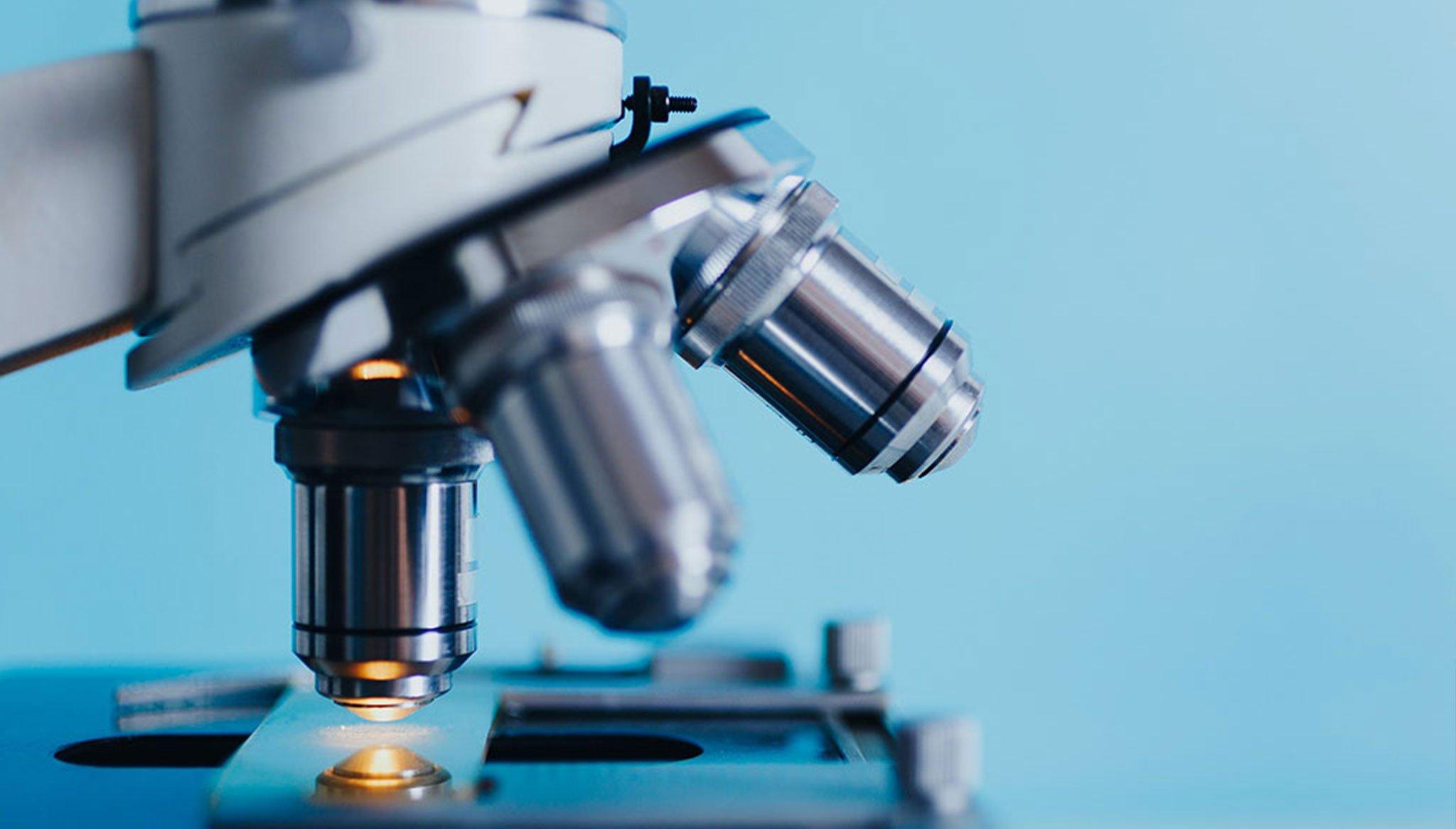 Paternity test in Dénia - González Laboratories
