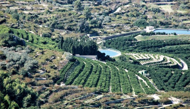 Image: Regional agriculture