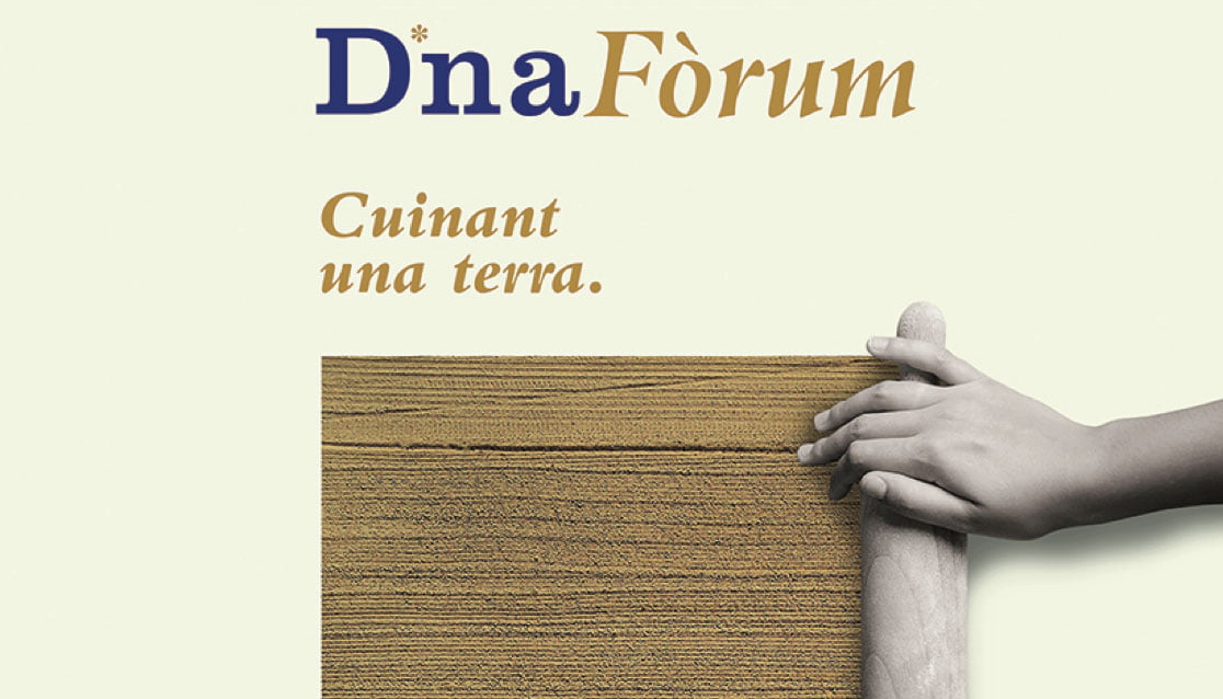 Cropped cover Llibre Conclusions DNA Fòrum