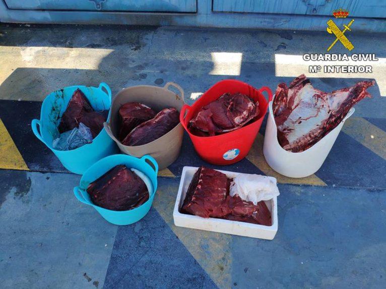 Bluefin tuna seized from the vessel