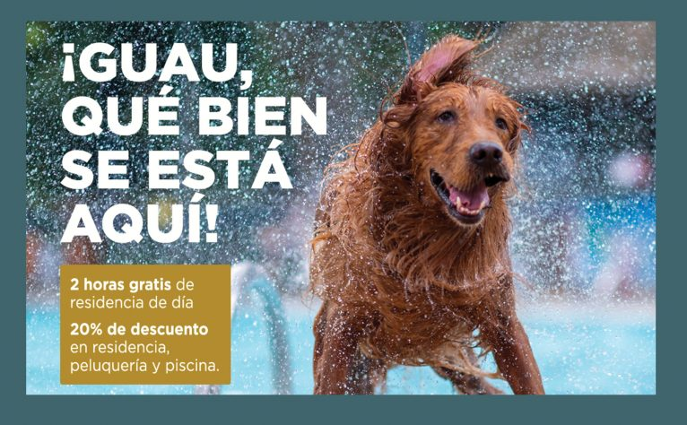 Collaboration between Portal de la Marina and Trust Resort Canino for the convenience of users
