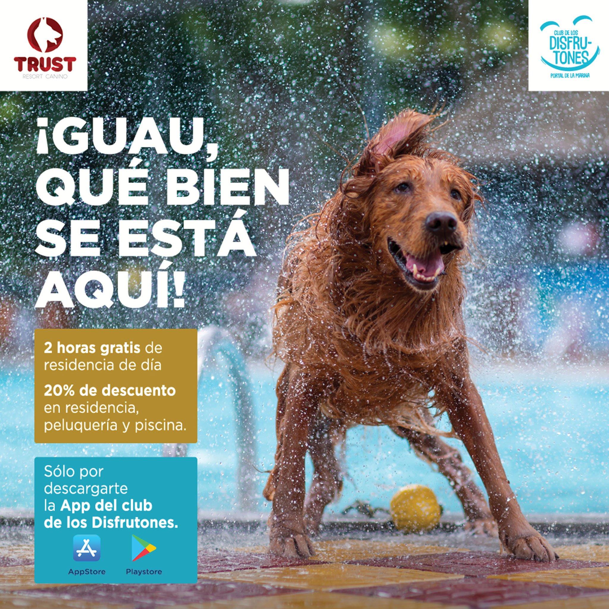 Collaboration between Portal de la Marina and Trust Resort Canino