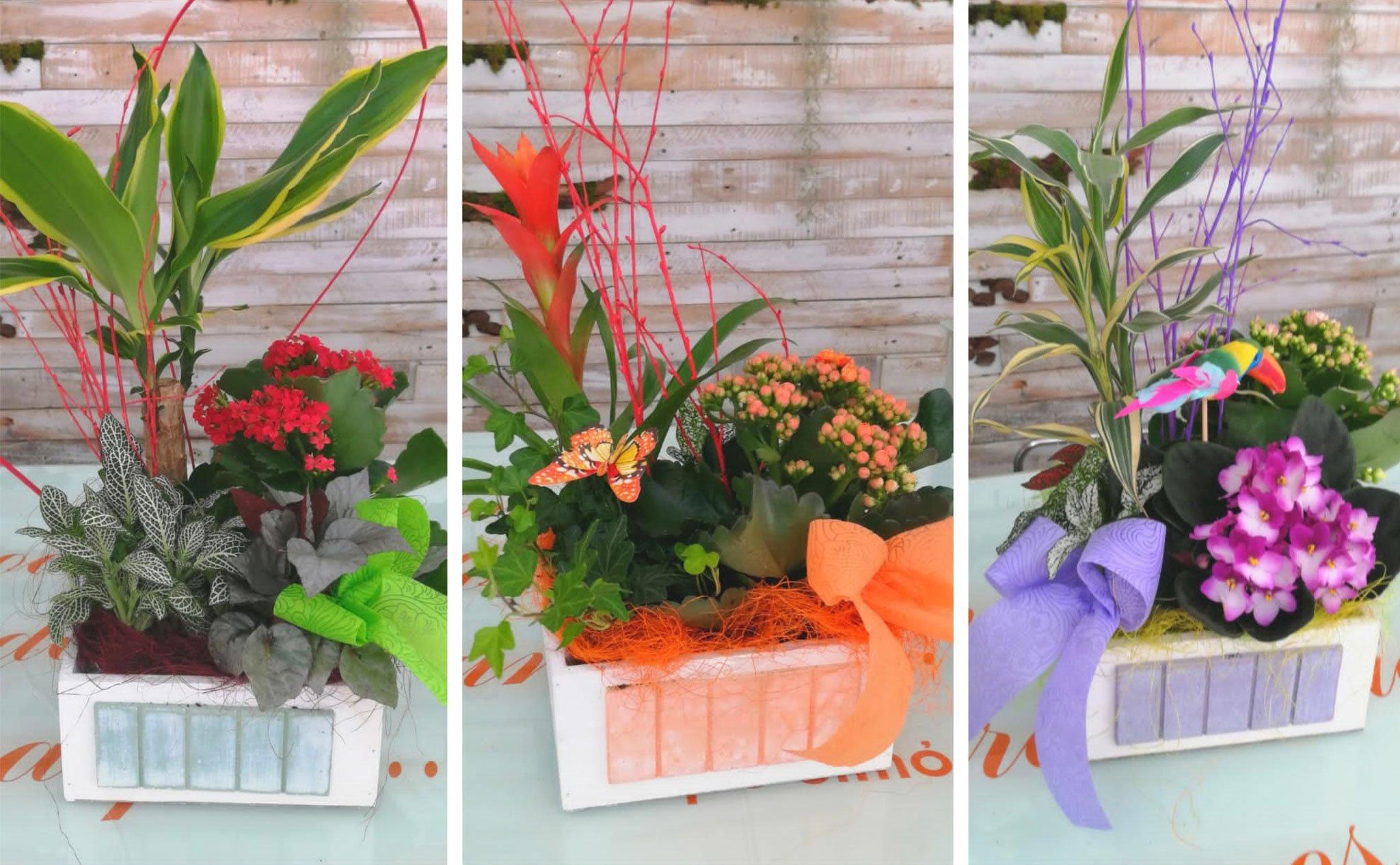 Detalles florales – Floristería Mandarina