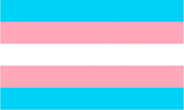 Image: The trans flag will fly for the first time in the town hall