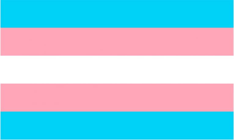 The trans flag will fly for the first time in the town hall