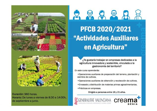 Image: Agriculture training program