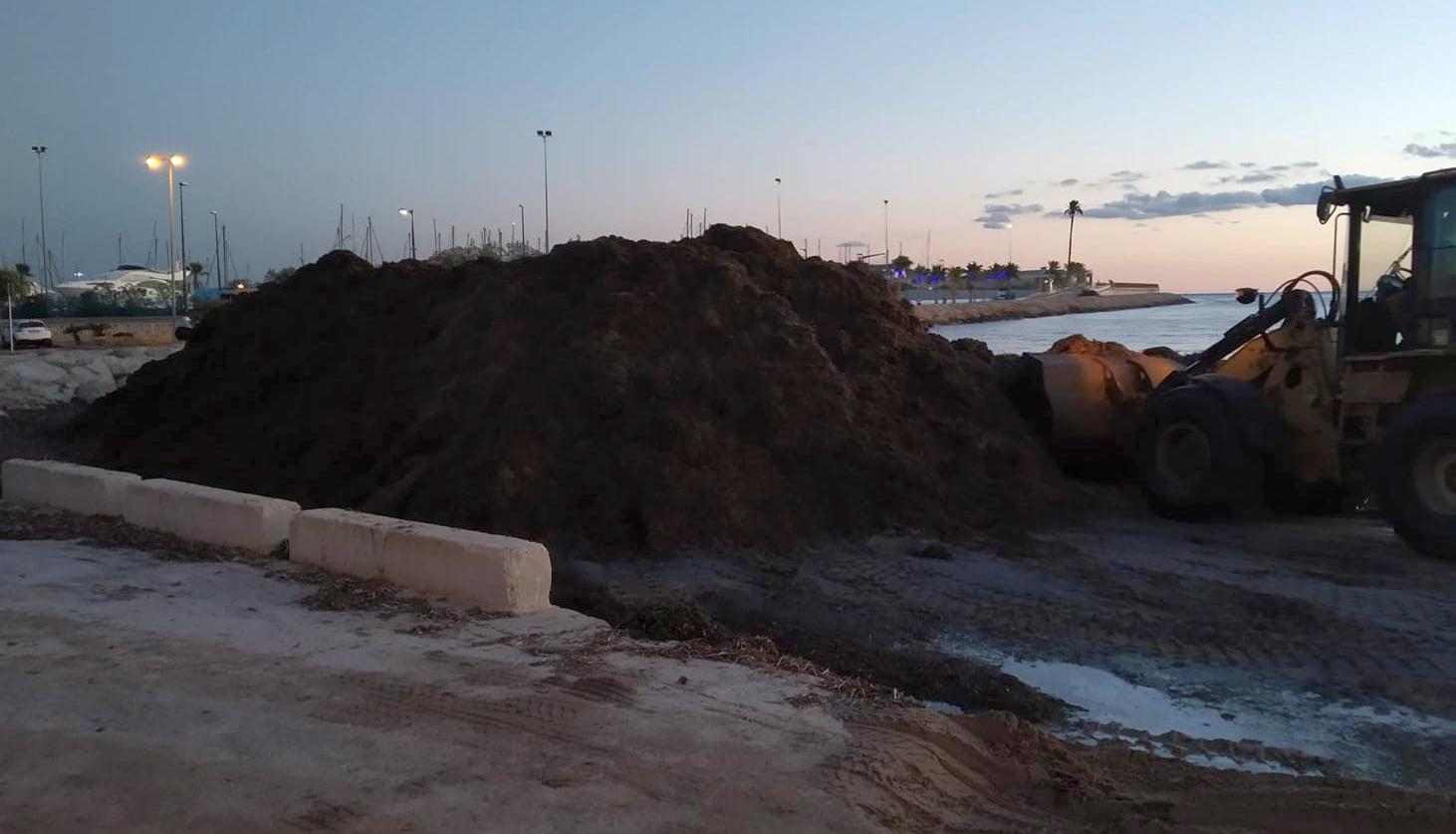 Trabajos de limpieza en la Marineta