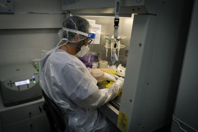 Image: Analyse des coronavirus dans le laboratoire de l'hôpital de Dénia