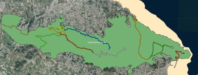 Imagen: En amarillo, la ruta hacia la Cova de l'Aigua (Fuente: Institut Cartogràfic Valencià)