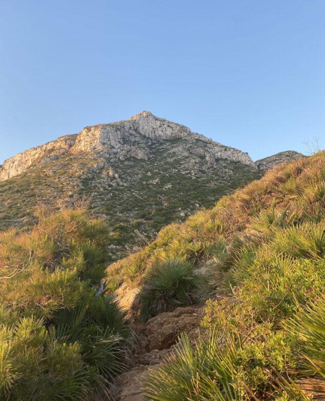 Imagen: Sendero de acceso a la Cova Tallada desde Dénia